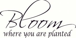 Bloom Where You Are Planted Decorative Wall Decal