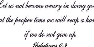 Galatians 6:9 Vinyl Wall Decals By Scripture Wall Art