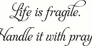 Life Is Fragile ~ Vinyl Wall Decal By Scripture Wall Art