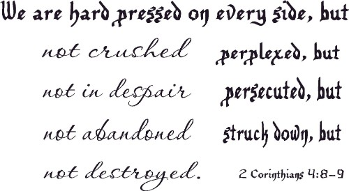 2 Corinthians 4:8-9 Christian Vinyl Wall Decal