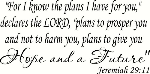 Jeremiah 29:11 Removable Vinyl Wall Decal