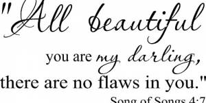 Song Of Songs 4:7 ~ Vinyl Wall Decal By Scripture Wall Art