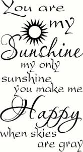 You Are My Sunshine Vinyl Wall Decals by Scripture Wall Art Image