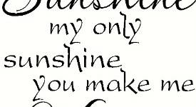 You Are My Sunshine Vinyl Wall Decals By Scripture Wall Art